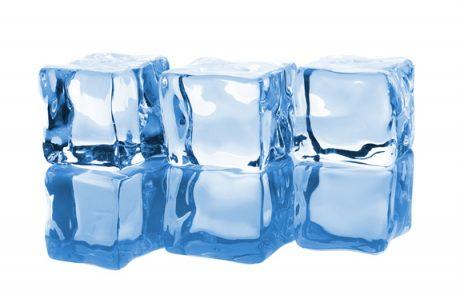 שפרה בפרשה – פרשת קרח